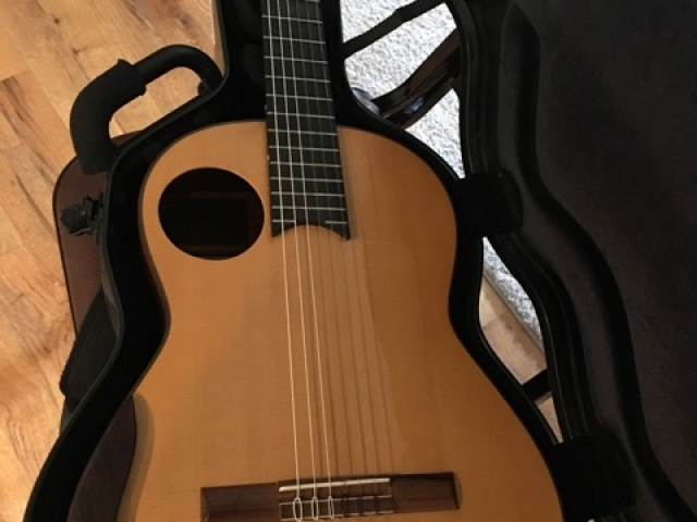 2004 Chapman Guitar for Sale