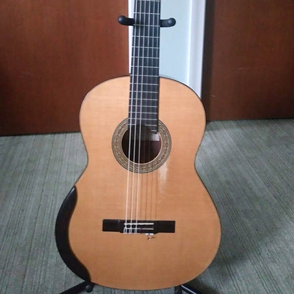 For Sale: 2011 Chapman Guitar with Case