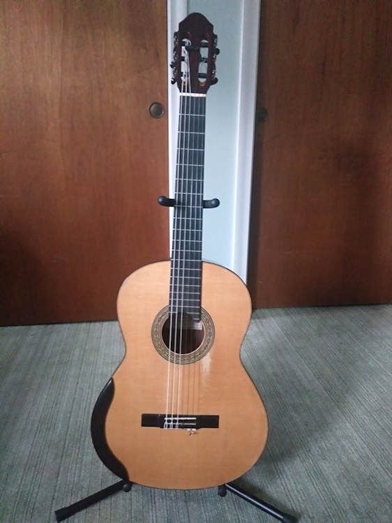 Photo of 2011 Chapman Guitar