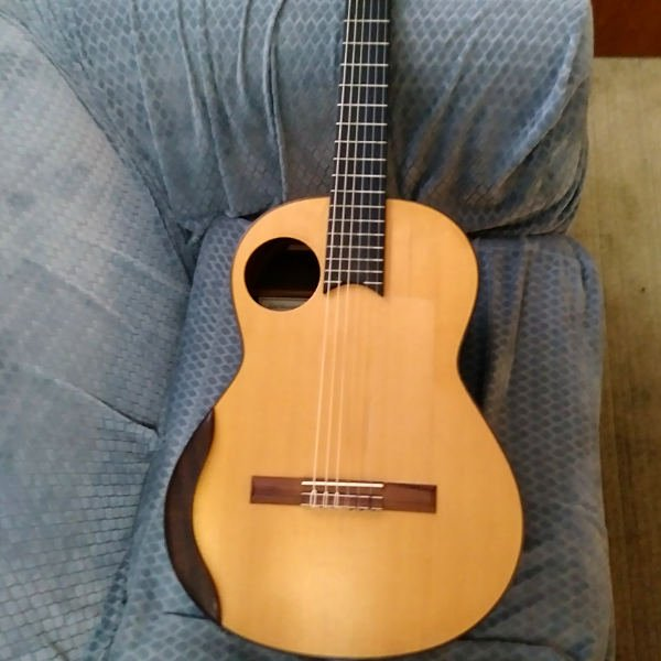 Chapman Guitar for Sale